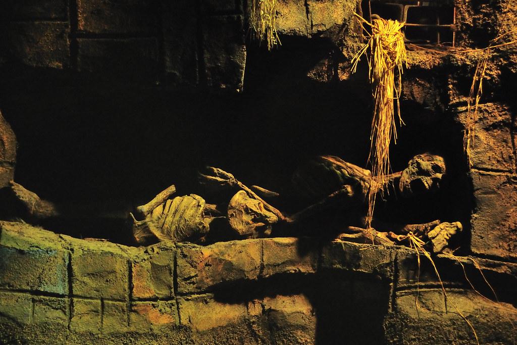 Indiana Jones- Crypt