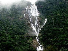 Is it milk or water? (Jayfotographia) Tags: india tourism nature trekking goa waterfalls karnataka castlerock vascodagama indianrailways dudhsagar mandoviriver irfca dudhsagarwaterfalls doodhsagar earthasia kulem braganzaghats jayasankarmadhavadas stunningphotogpin