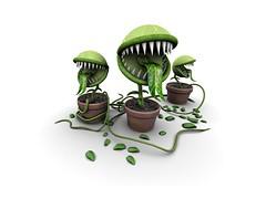 plantas_carnivoras-1024x768