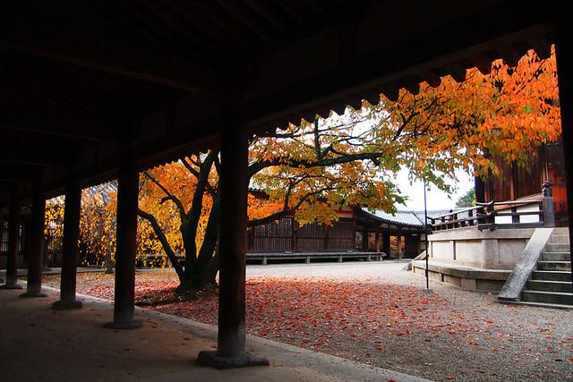 20101118_112109_法隆寺_東院伽藍