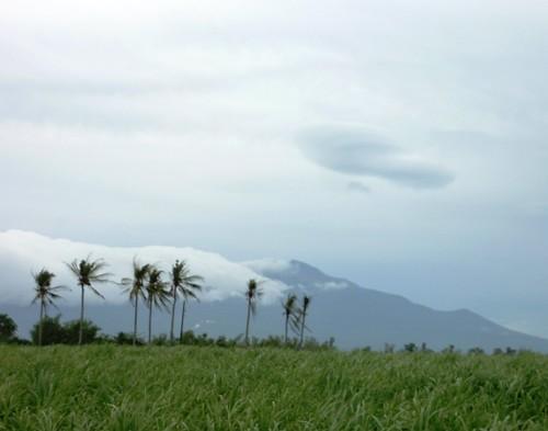 Negros -Bacolod-Savador-San Carlos (2)