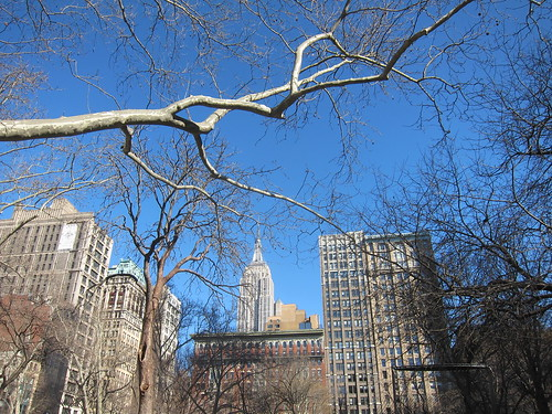 Madison Square Park. New York