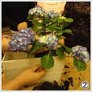 花團錦簇繡生活 (3)