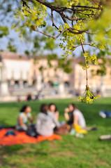Colazione sull'erba - The Picnic (Immacolata Giordano) Tags: italy tree verde green nikon picnic italia bokeh albero padova veneto ledjeunersurlherbe d5000 colazionesullerba nikkorafs3518gdx
