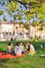 Colazione sull'erba - The Picnic (Immacolata Giordano) Tags: italy tree verde green nikon picnic italia bokeh albero padova veneto ledéjeunersurlherbe d5000 colazionesullerba nikkorafs3518gdx