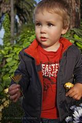 Flowers for Mama :) (Didenze) Tags: flowers light boy portrait toddler soft child natural explore sanclemente goldenhour nikolas 22months canon450d didenze