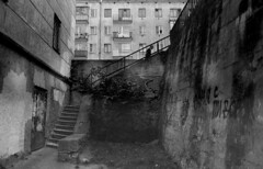 old man (Sergey Pozolota) Tags: ilfordpan100 ilford canonal1 oldman stairs film analog bw blackwhite building windows railing tree concrete walls balcony door