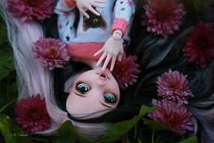 IMG_0177 (Cleo6666) Tags: monsterhigh monster high draculaura deluxe ooak repaint custom mattel doll