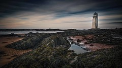 Southerness Lighthouse (malcolmacooper) Tags: southernesslighthouse scotland coast beach seaweed sea sand rocks historicbuilding protectedbuilding categorya listed building