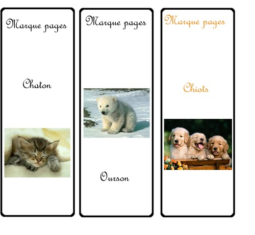 marques pages animaux A