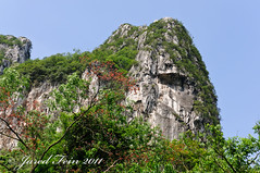 Scenic Surroundings (SewerDoc (200 Explores)) Tags: china trees cliff mountain nature rock asia guilin explore limestone cave guangxi guangxiprovince reedflutecave flickrexplore explored sewerdoc jaredfein mygearandme