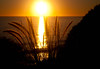TwentySeven - Orange (swkaplan) Tags: california sunset orange beach water silhouette canon la losangeles warm scenic wave 365 pacificpalisades xsi lightroom threesixtyfive
