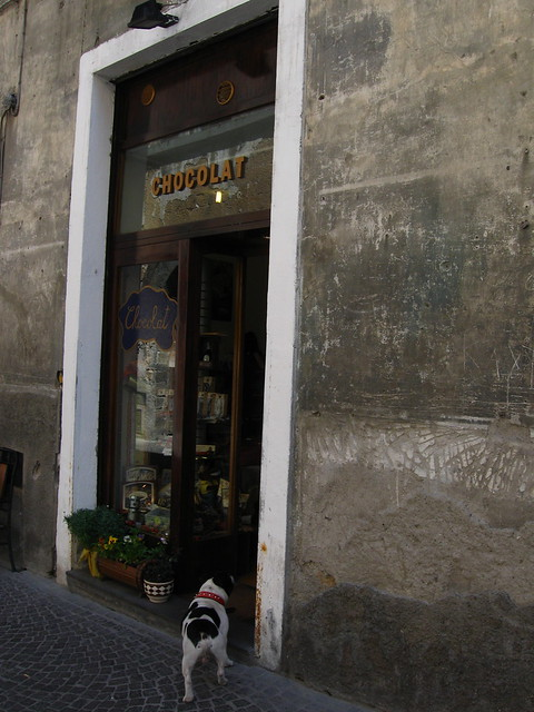 店の入り口と犬のフリー写真素材