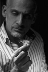 fly tying (stesettantadue) Tags: art water studio fly photo fishing mare fiume salt salmon fresh pike acqua costruzione pesca bait mosca tying artificiali esche salmone mosche luccio