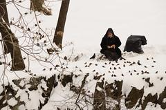 Feeding Birds (ralph and jenny) Tags: nyc newyorkcity vacation snow newyork bird birds hotel feeding centralpark snowstorm snowfall centralparksouth blizzard jumeirahessexhouse afvrzoom18200mmf3556gifed nikond7000