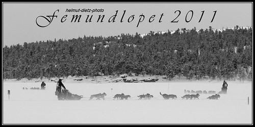 Femundlopet 600: Claes-Arvidsson-03-SWE-50