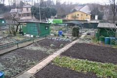 Lyon jardins potagers 11 (collina Fourvière)