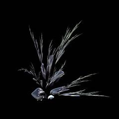 Simplicity (freetoglow (Gloria)) Tags: fractal visualart hypothetical incendia soulart digitalarttaiwan