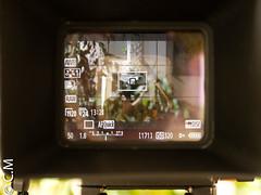 MagFinder_MonitorX_Canon7D-7.jpg