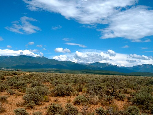 Sagebrush and Mountains