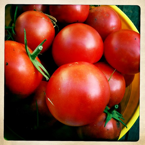 More tomatoes.