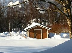 (Sue323 :-)) Tags: nature finland maria images sue kerimki luonto iphone laakso sue323