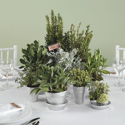 centerpieces using fresh herbs