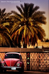 (eman fahad) Tags: old car