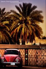 (eman fahad) Tags: old car سياره فلكر سعوديه قديمه هيد سسعودي