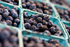 Blueberries at Central Market (ranzino) Tags: fruit pa lancaster carton lancastercounty rejected blueberries centralmarket amishcountry pennsylvaniadutchcountry padutchcountry