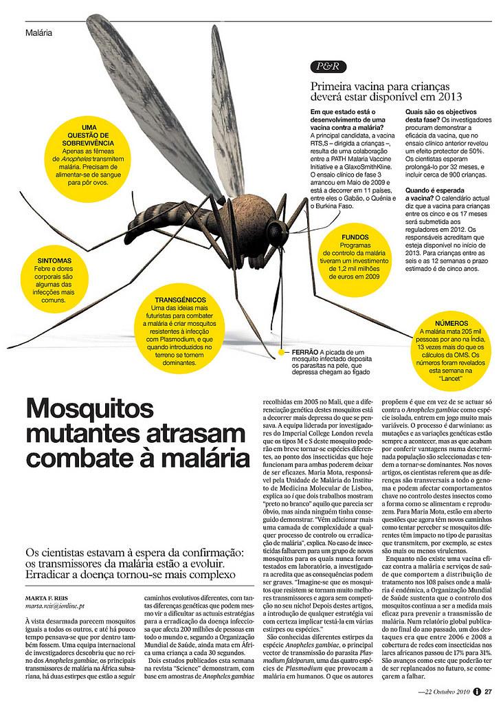 : Zoom : 27 Malária - Lm
