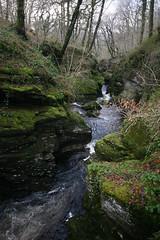 Ceunant Cynfal (Rory Francis) Tags: landscape moss rocks rocky gorge february picturesque gwynedd tirwedd eryri gushing meirionnydd ceunant llanffestiniog cynfal cwmcynfal cynfalgorge