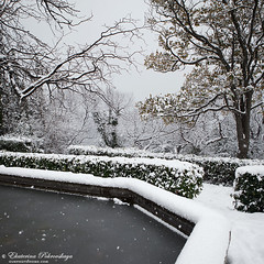 Voroncov_palace__winter_17