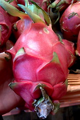 A single dragonfruit