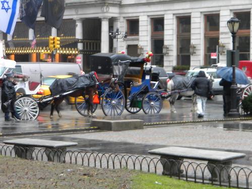 NYC 2011 (1)