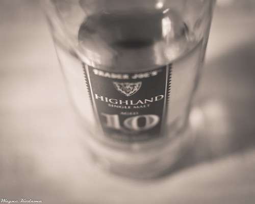 350/365 - It's Five O'Clock Somewhere by Wayne-K