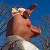 Pig's Ear (hogsvilleBrit) Tags: mainz square rosenmontag pig parade mainzerrad animal zoo fastnacht ear