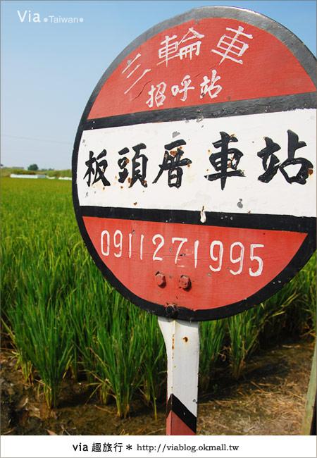 【嘉義景點】新港板頭村交趾剪粘藝術村~到處都是有趣的拍照景點!10