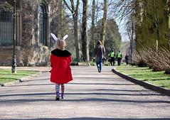 Alice walking (Mrs S.A) Tags: red rabbit spring colours ears nikond40 15challengeswinner gamesweepwinner