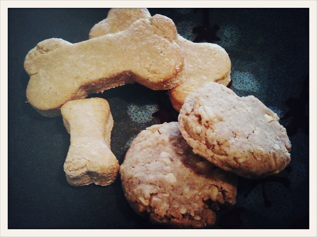 Akasha doggy biscuits by Caroline on Crack
