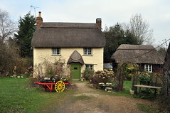 New Forest Cottage (dawn.v) Tags: uk england rural march cottage quaint newforest englishcountryside countrycottage thatchedcottage rufusstone chocolateboxcottage