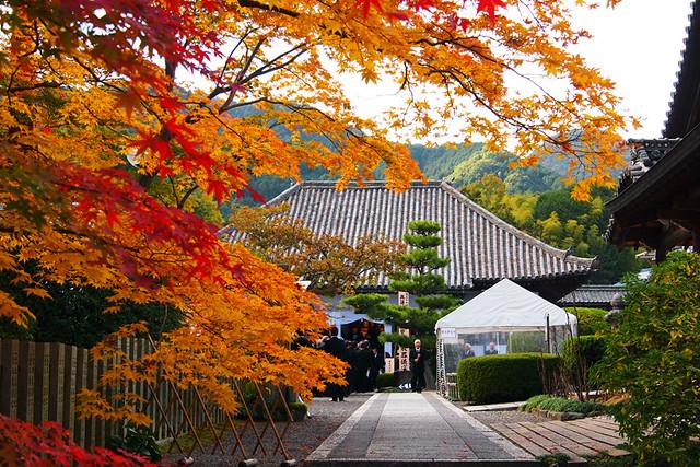 20101118_135842_當麻寺