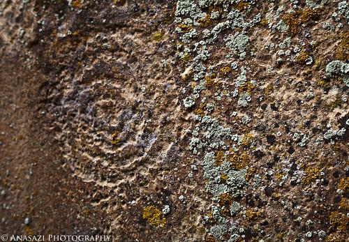 Lichen & Faint Spiral