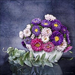 A small vase, colorful daisies .. (Rebeca Mello) Tags: stilllife flower daisies photoshop canon studio flor vase legacy vaso cs5 eos50d canoneos50d rebecamello rebecamcmello daarklands magicunicornverybest magicunicornmasterpiece trolledproud onmystudio