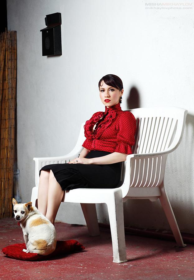 Paloma y el perro