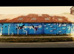 A recuperar lo que nos roban (Felipe Smides) Tags: streetart mural pintura valdivia muralismo smides felipesmides