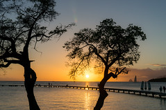 peaceful (m@t.) Tags: sunset martinique ponton mer