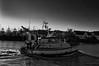 ELVIS-0290 (anathema56) Tags: elvis trouville chalutier fishingship