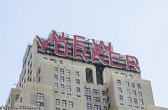 New York Comic Con 2014 (Greg Larro Photography) Tags: new york city yorker newyorker building manhattan