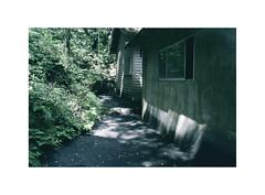 09 (LightWithoutHeat) Tags:  sakurajima   japon japan film analog argentique imacon filmisnotdead nikonf5 filmphotography grainisgood staybrokeshootfilm shade green sunlight fujicolorc200 135 c41 kurokami